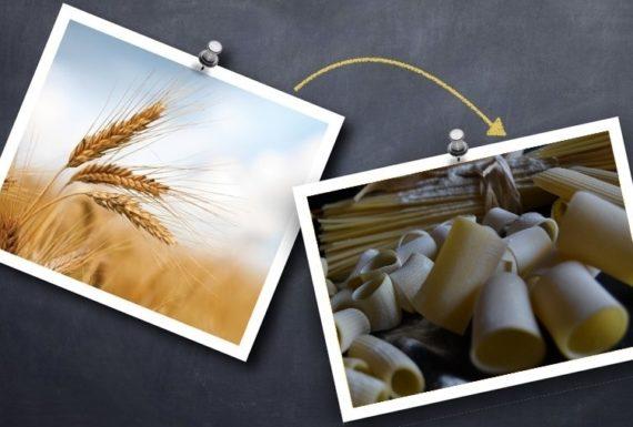 pasta grano duro consorzio terre di biccari